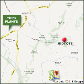 Hidcote on Google maps